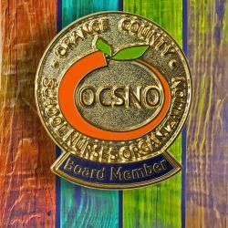 Orange County School Nursing Pin