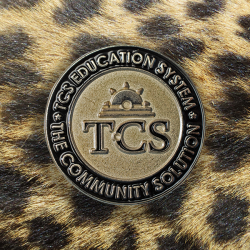 TCS Education Lapel Pin